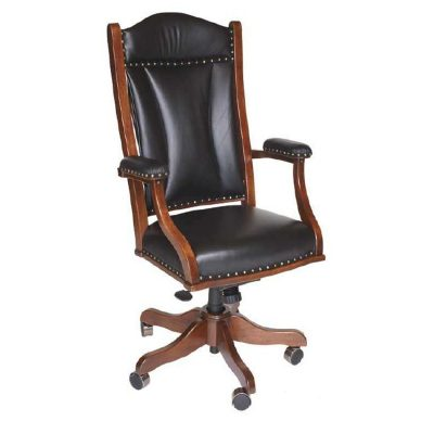 DC55 Desk Chair800